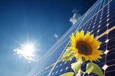 Sunshine on solar panels